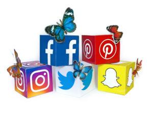 Bitsimba-booming-business-secrets-Flickr-Social-Media-Butterflies